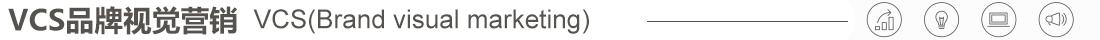 VCS视觉营销系统
